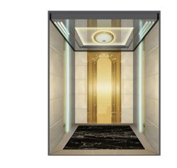 Vvvvf Control 환경 친화적인 홈 승객 엘리베이터 리프트