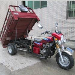 Driewieler de Met drie wielen van het Gas van Vijf Wiel van de Lading van de motor (SY250ZH-F9)