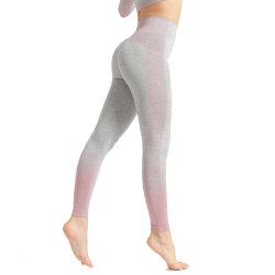 Frauen-Eignung strickte Yoga-Hosen, Sport-, dengamaschen Strumpfhose-nahtlose hohe Taillen-Hosen hochdrücken