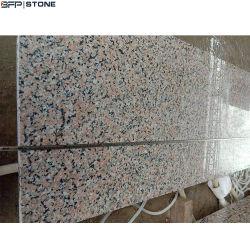 Pour les comptoirs de granit Dalle/paillasse/Plan de travail/PLANCHER/Flooring/Paving Stone/Fenêtre de la voie de l'escalier/seuil/Wall Tile (G603/G654/G684/G903/G664)