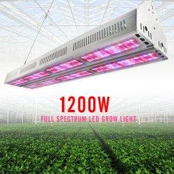 최고 에너지 절약 빨간 파장 660nm 1200W UV IR 점화