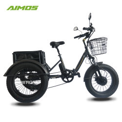 48V 750W Fat Tire Folding 3 Wheel Cargo Electric driewieler