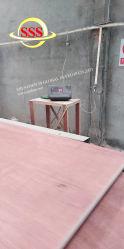 Estructura de acero Panel Sandwich modulares prefabricados contenedores de piezas de repuesto de la Casa de lujo suelos de madera contrachapada