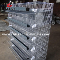 Smart Codorna Metal Cage e sistema de água