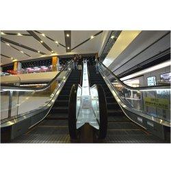 Supermarkt gebraucht 9000 Personen/H Rolltreppe