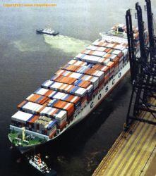 Größtes Shipping Forwarder für Finnland Shipment
