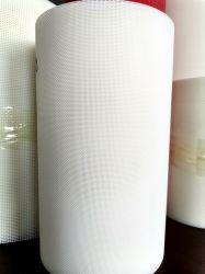 Productos calientes con precios competitivos de la correa de malla en espiral