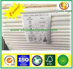 Dos gris avec revêtement blanc carte Duplex Making Machine papier