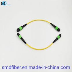 Cavo patch Fibe MPO/APC-MPO-APC SM G657A1 12 fibra LSZH 20 cm