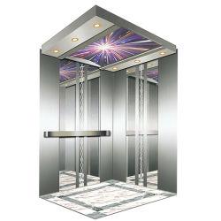 Lift van de Lift van het Huis van de Passagier van de luxe de Woon Goedkope met de Cabine van het Roestvrij staal
