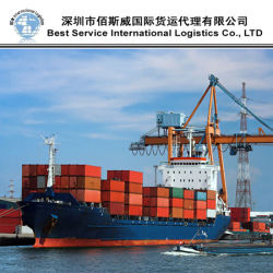 Trasporto internazionale del mare, servizio di logistica dell'oceano, contenitore pieno (20 '' 40 '')