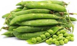 Alimentos saludables Conservas de arvejas verdes