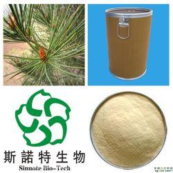 고품질 자연적인 소나무 바늘 추출 분말
