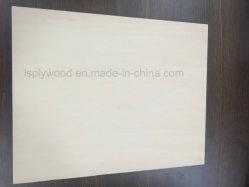 Feuerfestes 4'x8'-Formica-Hochdruck-Laminatsperrholz
