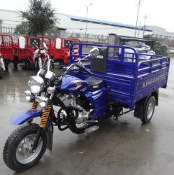 200cc Cina New Three Wheel Trikes e Chopper