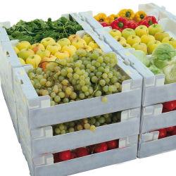 Casse di plastica vuote della frutta e della verdura dell'OEM Twinwall