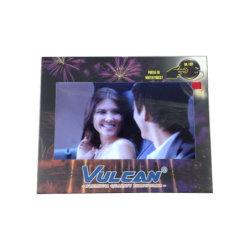 7inch LCD de VideoCatalogus van het Scherm voor Zaken