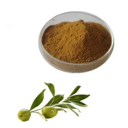 Estratto verde oliva del foglio dell'oleuropeina di alta qualità 10%-40%