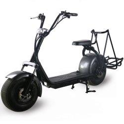 안락 시트 Citycoco 스쿠터를 가진 디자인 Harley 골프 카트 Halley 새로운 스쿠터 Citycoco