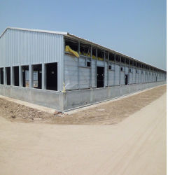 Estructura de acero prefabricados rentable de la casa de aves de corral para el pollo o cerdo/animal/Granja