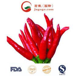 De nieuwe Rode Spaanse peper van de Goede Kwaliteit van de Uitvoer van het Gewas Verse Plantaardige