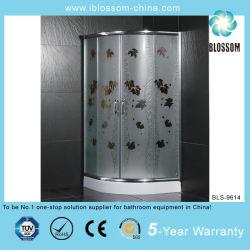 新しい屋内ステンレス鋼のシャワー室(BLS-9614)