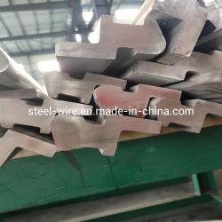 L'acciaio inossidabile laminato a caldo di figura irregolare di AISI 316 ha profilato la barra