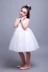 Les filles jupe dentelle brodée robe de princesse robe de mariage pour les enfants
