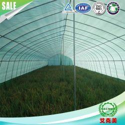La tasa de sombreado del 90% de las películas de mullido verde y blanco, el cultivo de hongos comestibles en invernadero