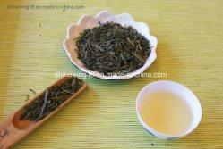 Senchaの従来の蒸気を発した緑茶