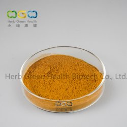 より低いコレステロール値のための自然なプラントエキスのカシア桂皮のシードおよび草Antibiosisのハーブ