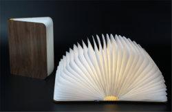 Мини-Hand-Made бумаги книги лампа