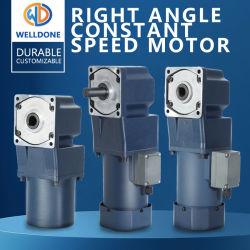 Rechtwinkliger Wechselstrommotor, Reduziermotor, Miniatur, rechts Winkelmotor Drehstrommotor Getriebe Miniaturmotor 220V AC Motor