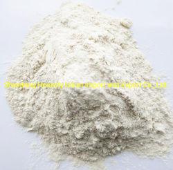 Alhos desidratados alho em pó melhor qualidade e preço baixo grau a Pwder