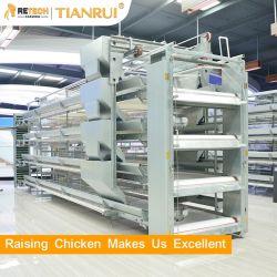 좋은 가격 판매를 위한 자동적인 계란 층 닭 농장 놓는 암탉 가금 건전지 감금소