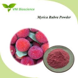 ISO Sgscertified Myrica Rubra/Vermelho/Pó Bayberry Arbutus em pó/Waxberry em pó