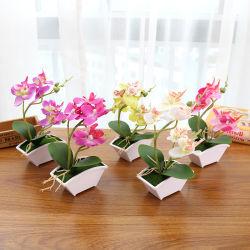 Phalaenopsis Style Bonsai plantes artificielles Fleurs artificielles