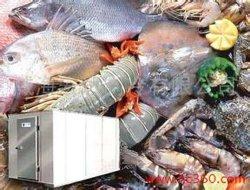 Camera fredda, cella frigorifera, congelatore a contenitore, congelatore a miscela per pesce