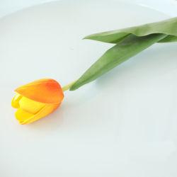 زهور اصطناعية ذات لمسة حقيقية زهرة اصطناعية للديكور المنزلي