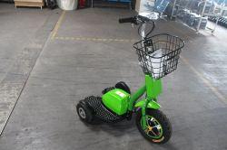 De elektrische Driewieler voor Persoon 3 maakte Elektrische Autoped (yc-2016003) onbruikbaar