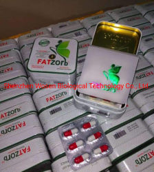 丸薬を細くするFatzorbの有効な草のエキス