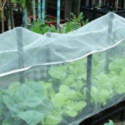 Vrigin HDPE 40 Mesh 50 Mesh 100g 120g resistente agli insetti NET Garden Nettin per l'agricoltura serra orticoltura copertura vegetale Giardino Fabbrica netta