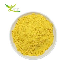 Usine de légumes d'alimentation de la poudre de citrouille / Squash Cushaw Poudre Poudre// poudre Cuaurbit