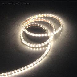 Decorazione edificio LED corda Light colore cambia decorazione stagionale corda Luci per le feste
