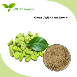 ISOSGS Certified Natural Green Coffee Beans Extract für Lose Weight