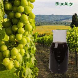 Bio líquido fertilizante foliar de aminoácidos para la planta