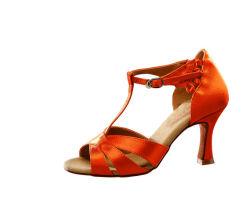 Высокое качество оптовая торговля девочками High-Heeled бальный зал танго латинской танцевальная обувь