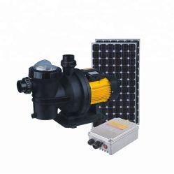 48V 500W de energía Solar inflables de la bomba de Piscina