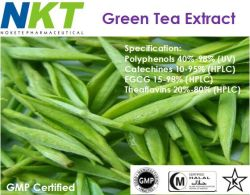 Estratto del tè verde (EGCG)