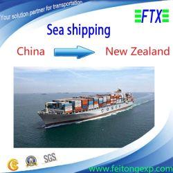 Logistica FCL/LCL Sea Freight Shipping Service per Auckland/Wellington Nuova Zelanda